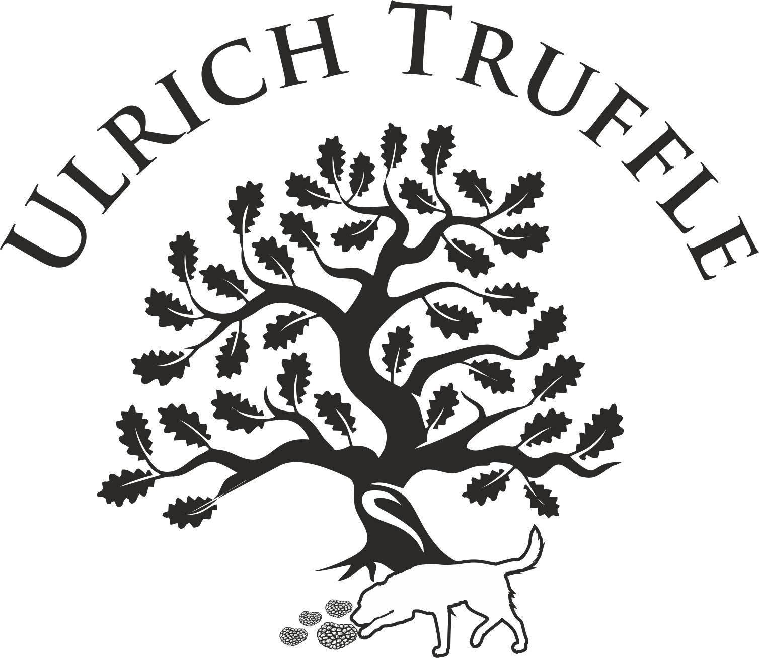 ulrich_logo_v12